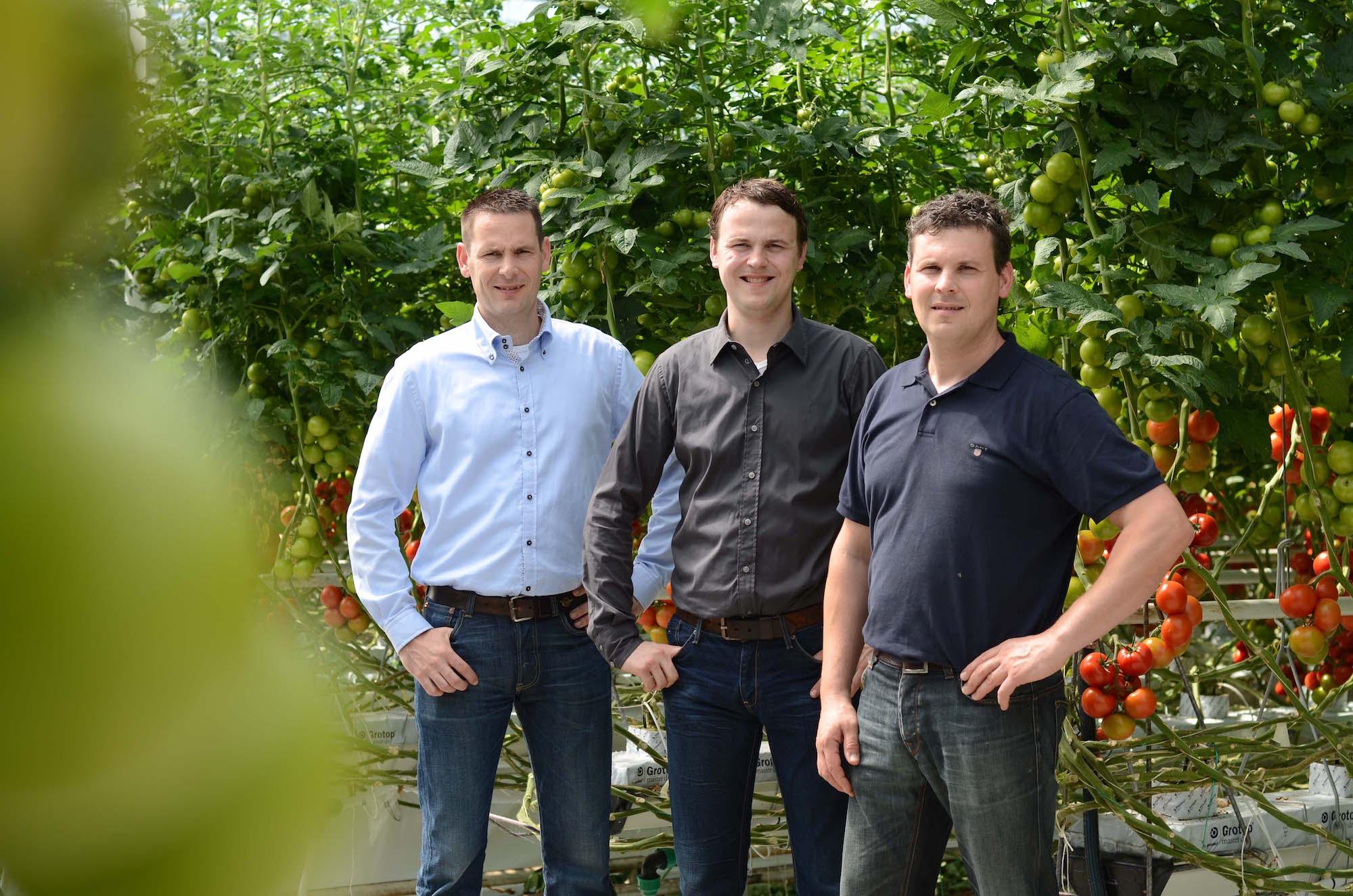 Dirk Pieter, Rochus en Aris